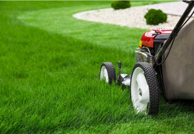 Best Lawn Mowing services near me