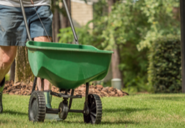 Best Aeration and Seed services near me