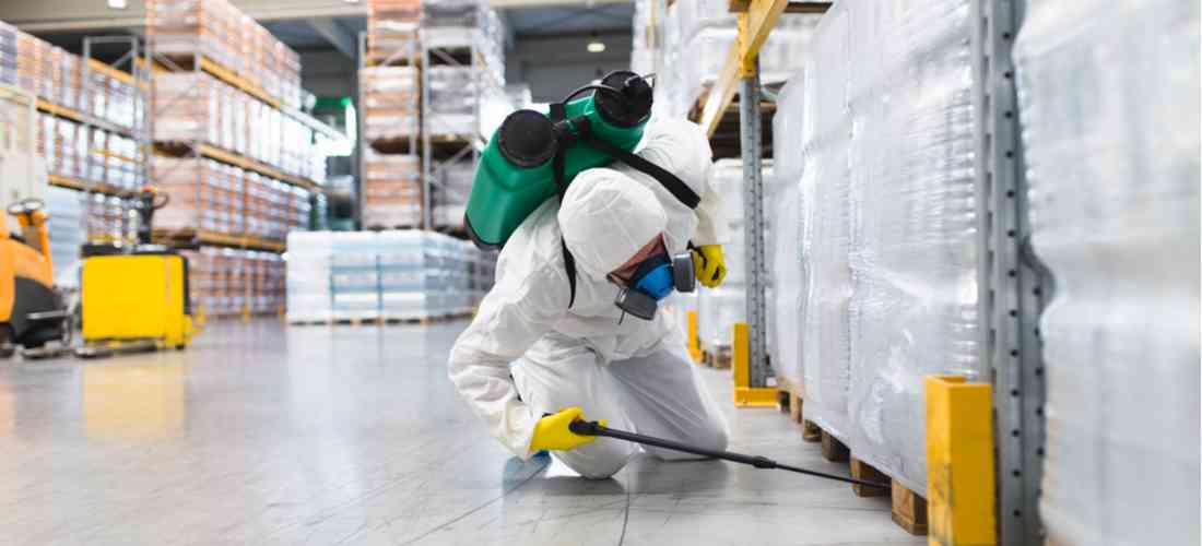 more about Pest Control Services