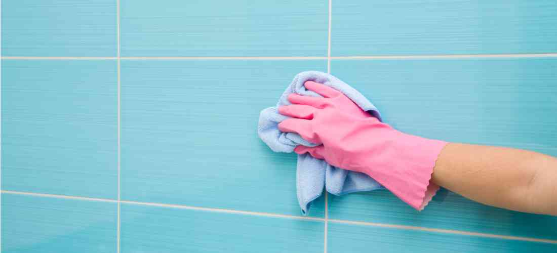 more about House Cleaning